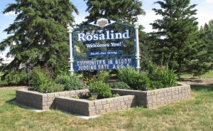 Welcome to Rosalind 2015
